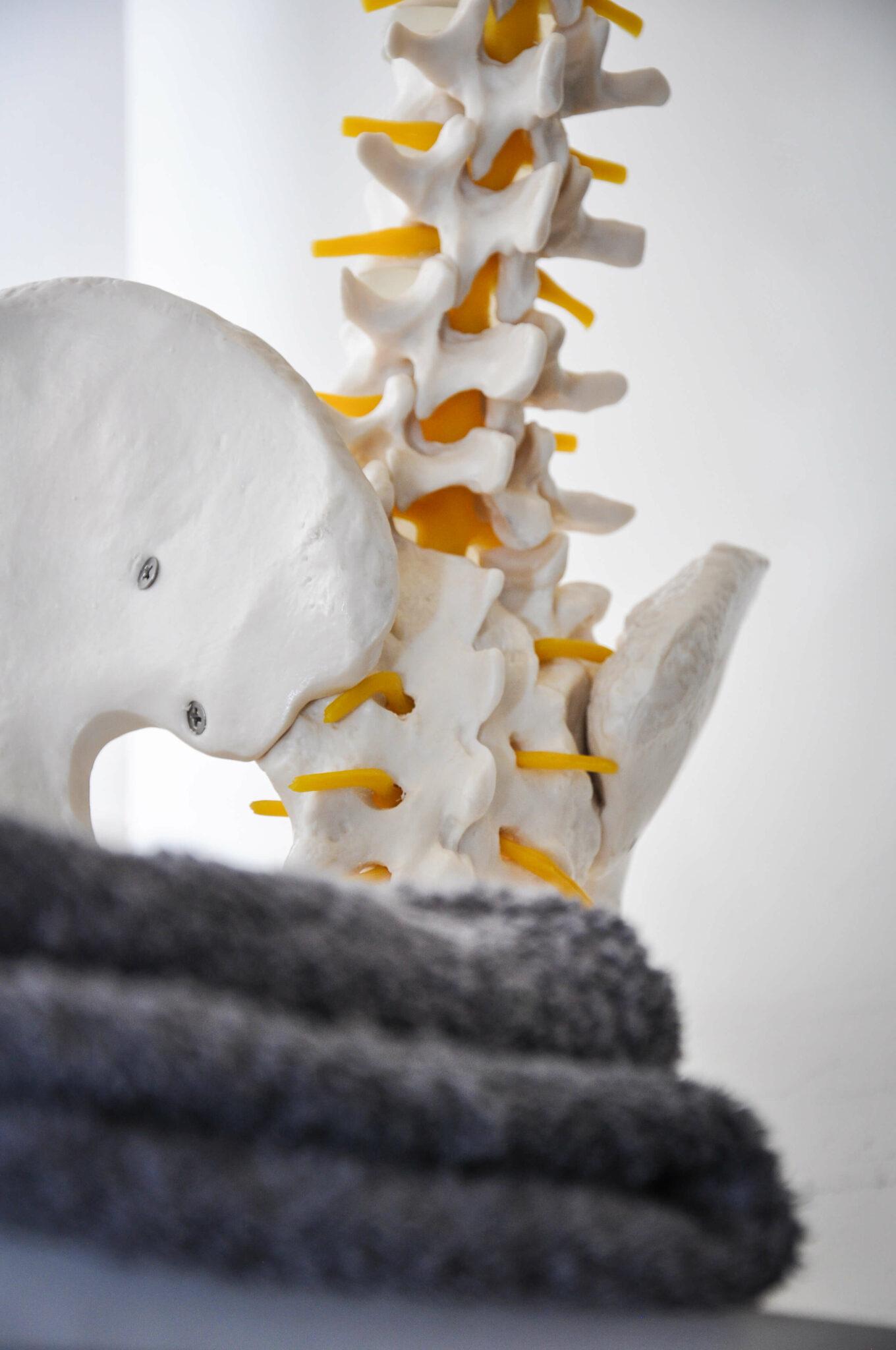 goPhysio Back Pain