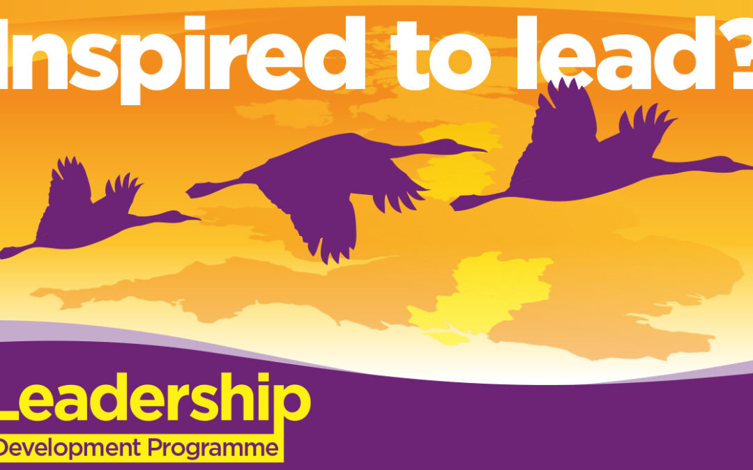 CSP Leadership & Development Program Reflections