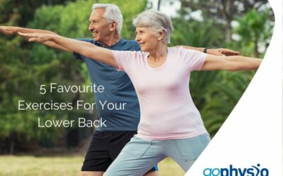 5 Favourite Exercises For Your Lower Back